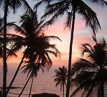 Goan Sunset by dbartle