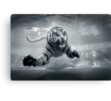 Underwater Danger Canvas Print
