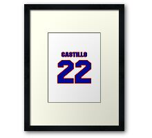 National baseball player Alberto Castillo jersey 22 Framed Print