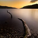 Loch Ness Monster by cieniu1