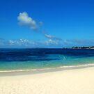 Paradise Island by Mandy Wiltse