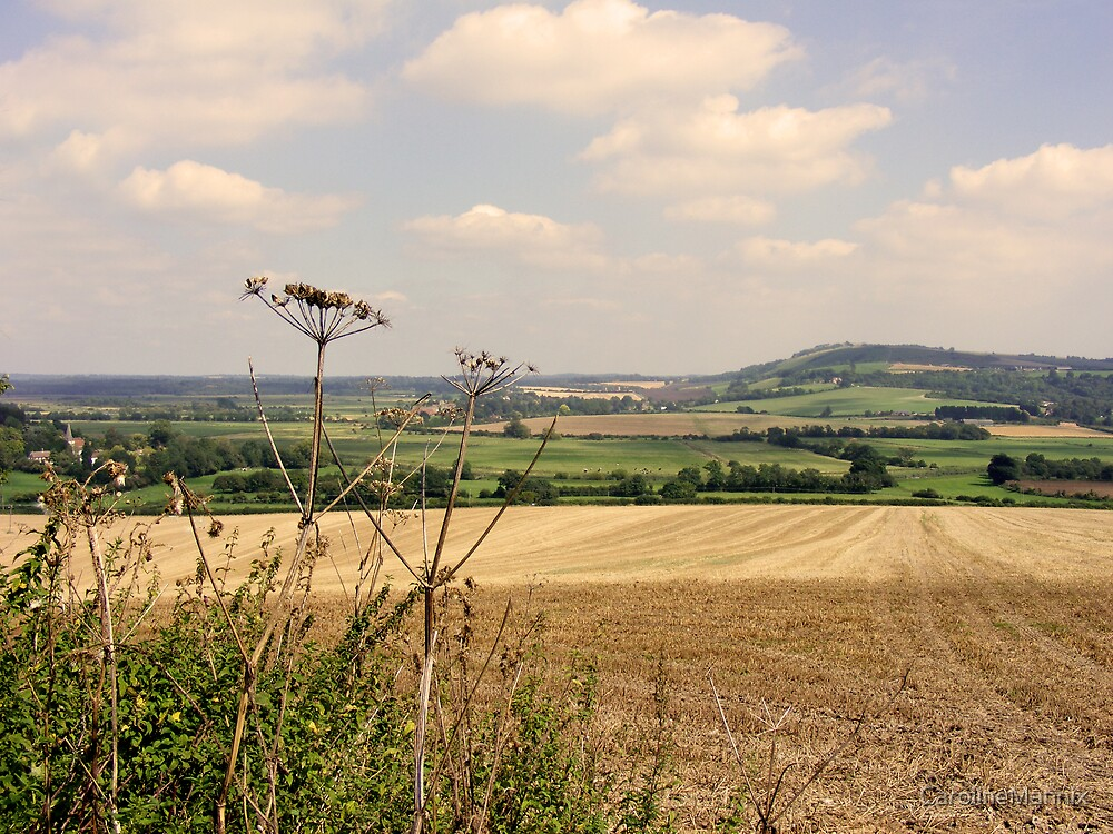 Tranquil Sussex Landscape by CarolineMannix