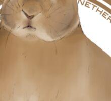 Netherland Dwarf Rabbit (plain) Sticker