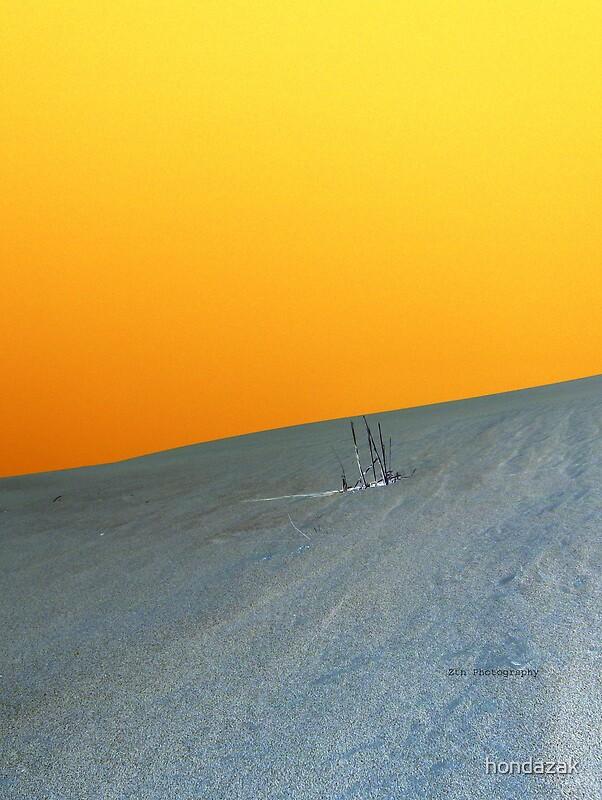 orange dune by hondazak