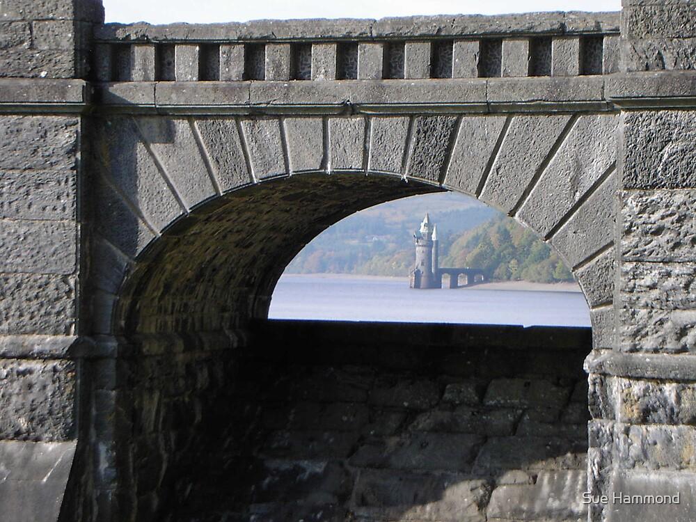 Through the arch by Sue Hammond