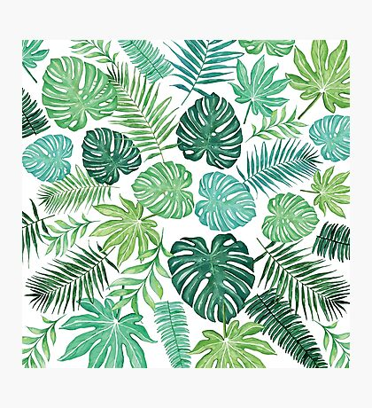 Tropical Palm and Monstera Watercolor Pattern on White Photographic Print