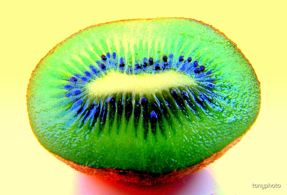 Kiwi Fruit by tonyphoto