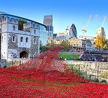 The Wave Tower of London Poppies by Colin  Williams Photography