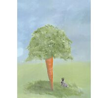 Prize Carrot Photographic Print