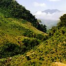 A Forgotten Land – Laos by Joumana Medlej