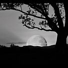 Moonrise by Jeff Davies