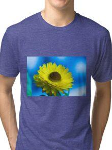 Strawflower Tri-blend T-Shirt