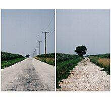 Welcome to the Midwest Photographic Print