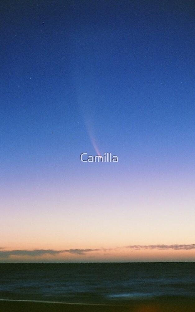 McNaught Over Grange 2 by Camilla
