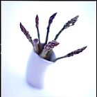 Sparrowgrass by Teresa Gaudio