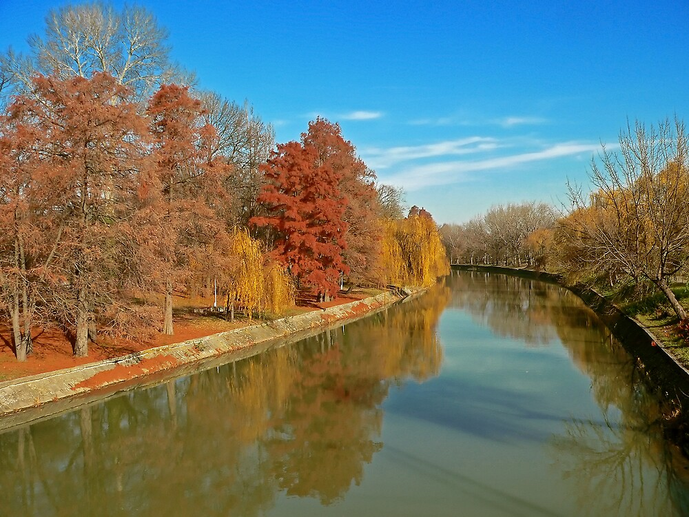 Timisoara in colours VIII by GabiB