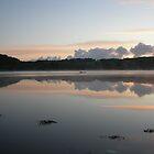 High tide on the Eastern Cleddau by Mark49