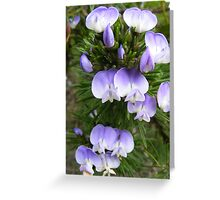 Macro Flowers Greeting Card