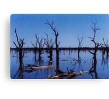 Land of Bone Trees Canvas Print