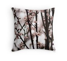 Cherry Blossoms in Spring Throw Pillow