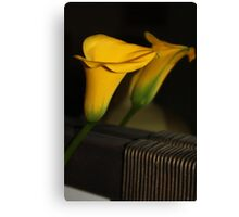 Amarillo beauty Canvas Print
