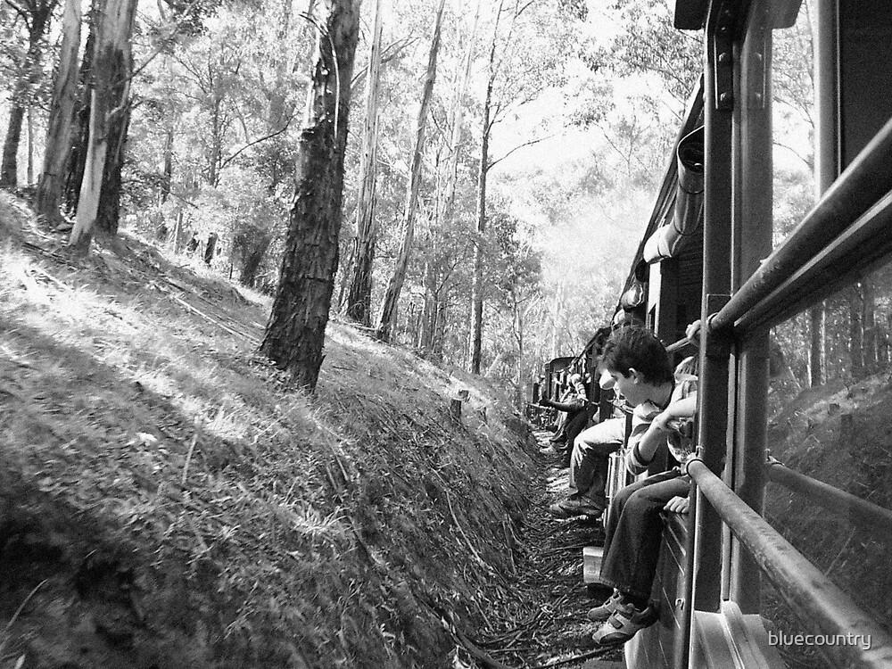 train ride by bluecountry