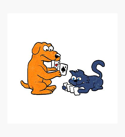 dog and cat playing cards Photographic Print