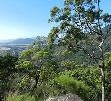 Half way up, Karanda, Qld, Australia by sandysartstudio