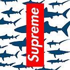 Supreme sharks by nemanjagasic
