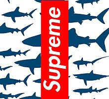 Supreme sharks by nemanjagasic