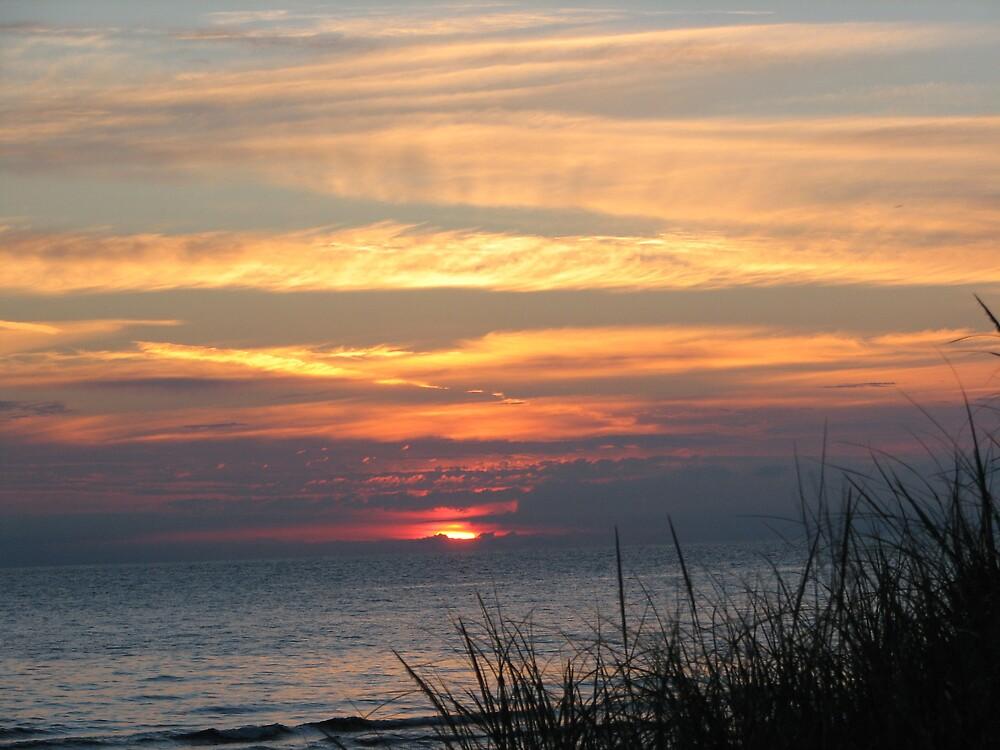 Sunrise by danita