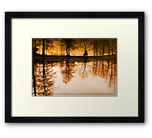 Dream of the trees Framed Print
