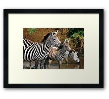 Striped Family Framed Print