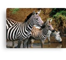 Striped Family Canvas Print