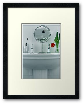 Tulip in the Loo by shall