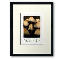 MAGICUS Framed Print