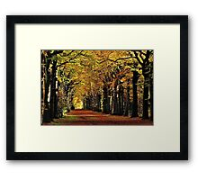 Enjoying more autumnal sunshine Framed Print