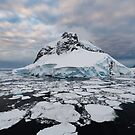 Booth Island, Antarctica by Mark Prior