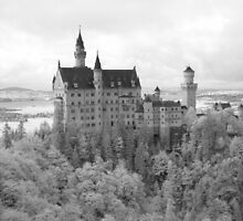 Neuschwanstein Castle by Trent Wallis