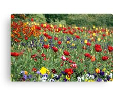 symphony of color Canvas Print