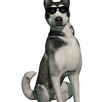 Cool Dog Solitary by headwax