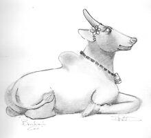 Brahmin cow by Danpatterson