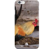the chicken came between the eggs iPhone Case/Skin