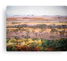 Outback Plains Canvas Print