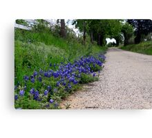 heart of the country Canvas Print