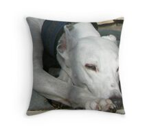 Piper - Tired Out Throw Pillow