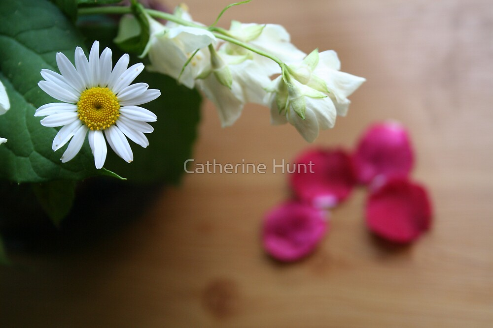 Daisy and Orange Blossom by Catherine Hunt