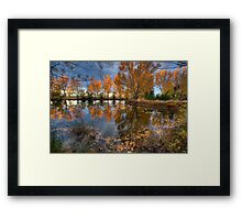 Autumn in Otago County Framed Print