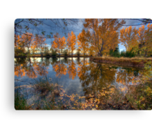 Autumn in Otago County Canvas Print