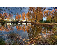 Autumn in Otago County Photographic Print